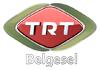 Play TRT Belgesel